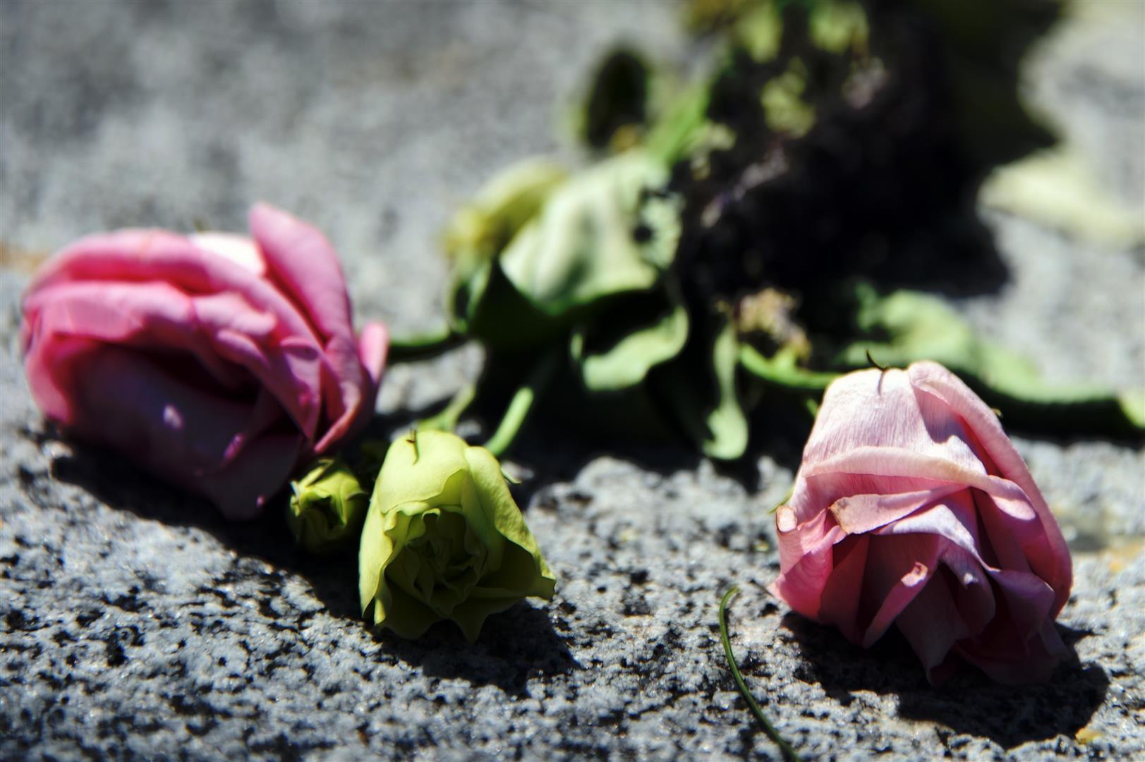 Dead Flowers (Large)