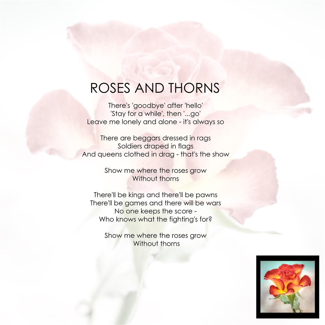 roses-and-thorns