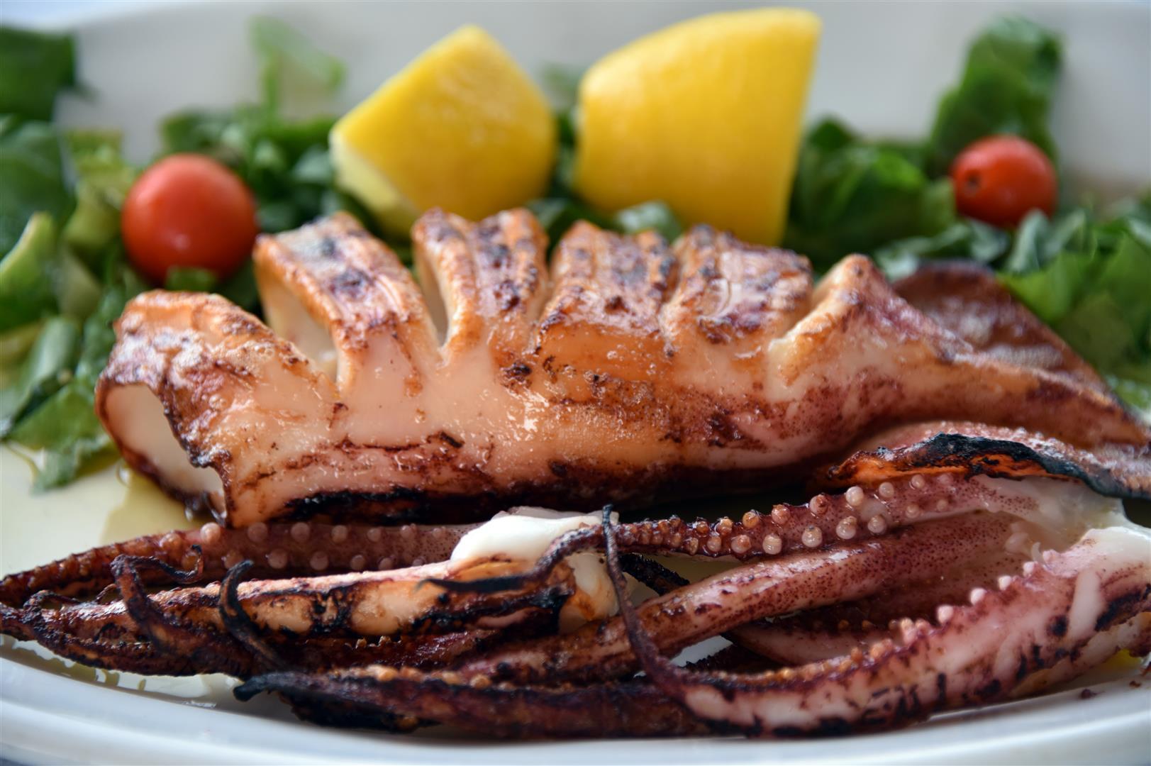 Food - Calamari1 (Large)
